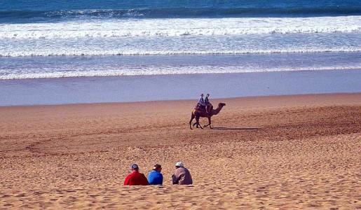 Morocco_Agadir_Beach_Camel